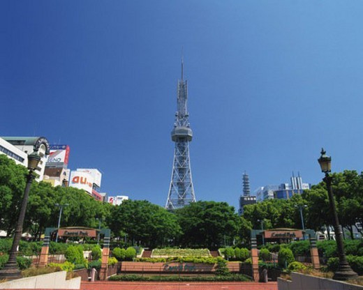 Central Park and TV Tower, Nagoya City, Japan, Low Angle View, Pan Focus : Stock Photo