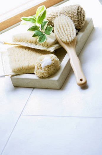 Stock Photo: 4029R-160549 Bath sponges and brush