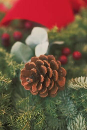 Christmas Image : Stock Photo