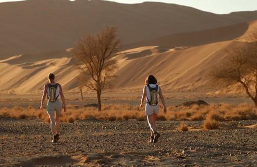 Stock Photo: 4029R-170720 Sand Dunes of Sossusvlei - Namib desert, Namibia