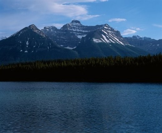 Lake Near Mountains And Forest : Stock Photo