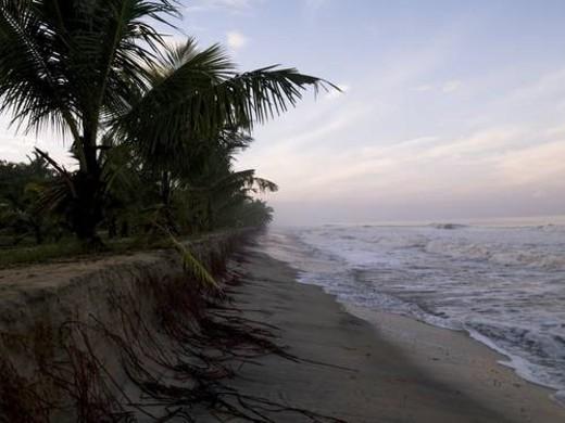 Arabian Sea, Kerala, India : Stock Photo