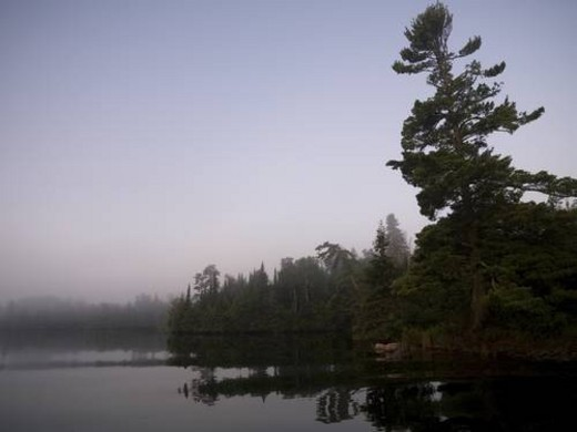 Lake of the Woods, Ontario, Canada, Reflections on a lake : Stock Photo