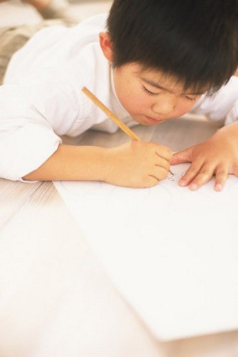 Stock Photo: 4029R-179767 A Young Boy studying hard