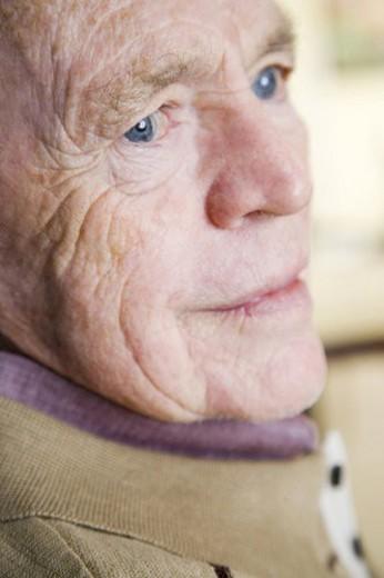 Portrait of an elderly man : Stock Photo
