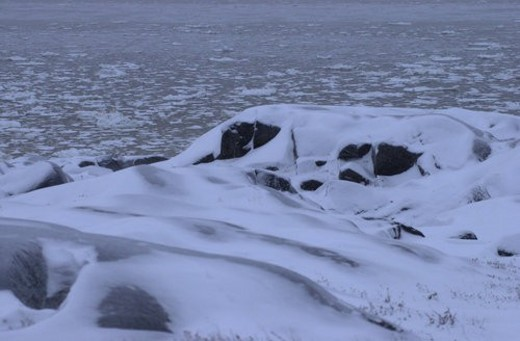 Churchill Northern Manitoba  Canada Tundra Shoreline : Stock Photo