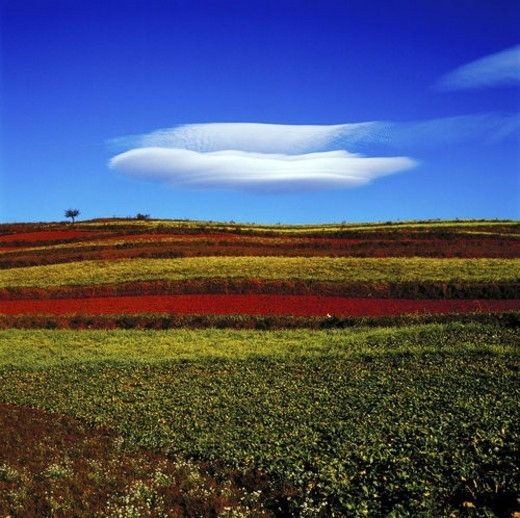 Red soil under blue sky, Dongchuan, Yunnan : Stock Photo