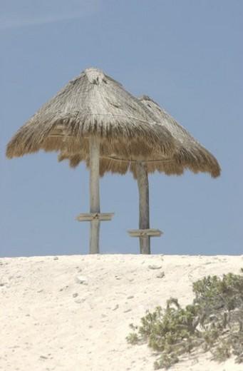 Beach umbrellas on a beach in Mexico : Stock Photo
