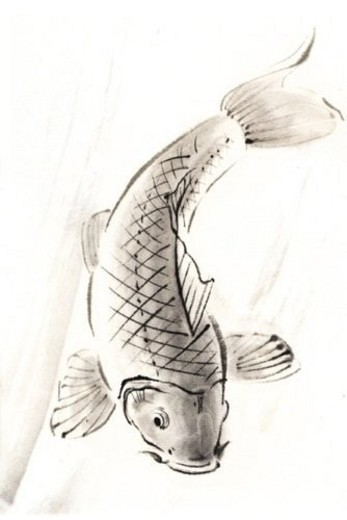 Stock Photo: 4029R-186070 Carp, Ink Brush Painting