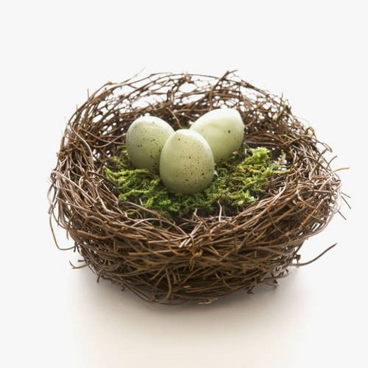 Studio still life of bird s nest with three speckled eggs. : Stock Photo