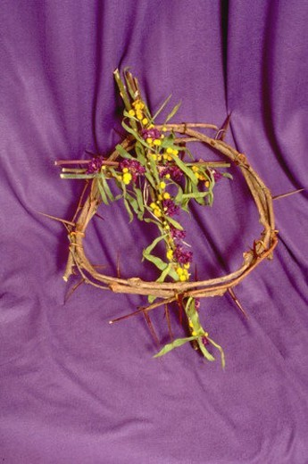Crown of thorns with cross : Stock Photo