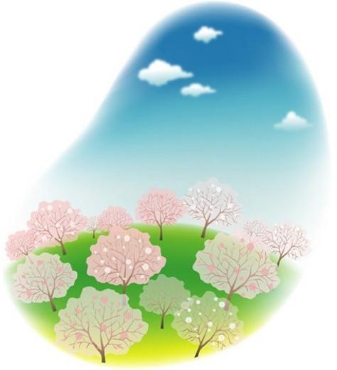 Stock Photo: 4029R-193474 clouds, spring, flower, tree, sky, plant, season