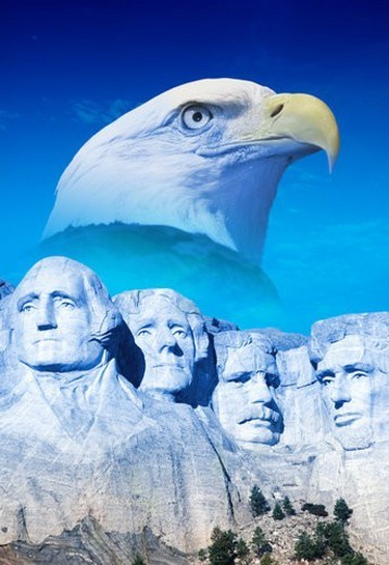 American eagle behind Mount Rushmore : Stock Photo