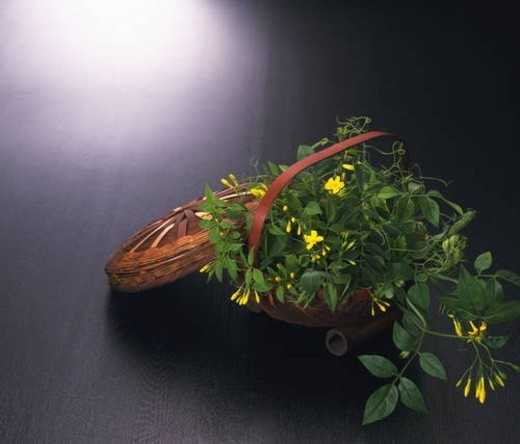 Flowers in a basket : Stock Photo