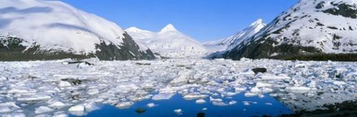 Icebergs and glacier : Stock Photo
