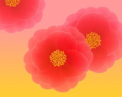 Closed Up Image of Three Red Camellias In Front of a Yellow-Pink Surface, Illustration, Illustrative Technique : Stock Photo