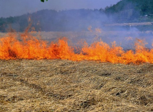 Stock Photo: 4029R-204721 burning, rural, fire, farmland, countryside, flames, pastoral