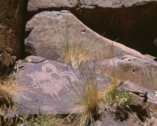 Ancient petroglyph rock art portraying bighorn sheep, Mojave Desert : Stock Photo