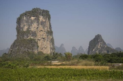 Yangshuo county, China, Asia; Karst peaks and rice fields : Stock Photo