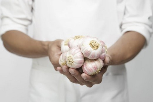 Chef holding garlic onion (mid section) : Stock Photo