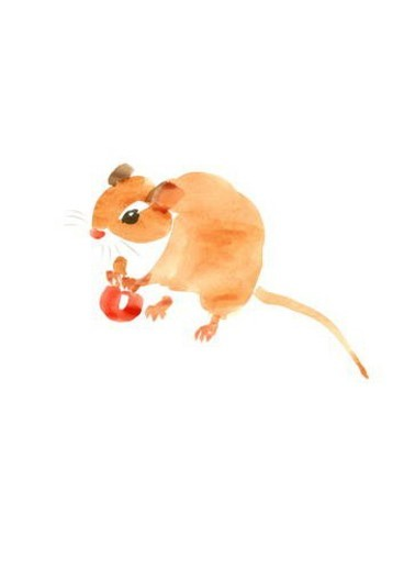 Stock Photo: 4029R-214489 Illustration of mouse, white background, copy space