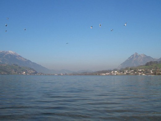 city, banks, Central Switzerland, beautiful, bay, alpine upland : Stock Photo