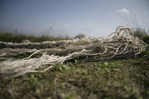 Stock Photo: 4029R-22701 tau, broken, coast, cord, disrupted, Fischer-hurry, grass