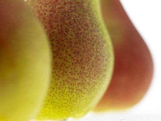Stock Photo: 4029R-22946 Food, Fruit, Pears