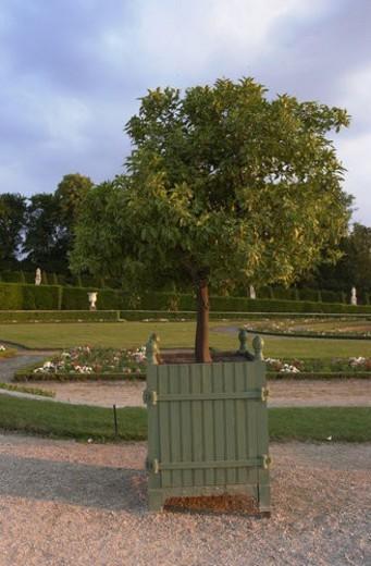 Stock Photo: 4029R-233520 Chateau de Versailles, France