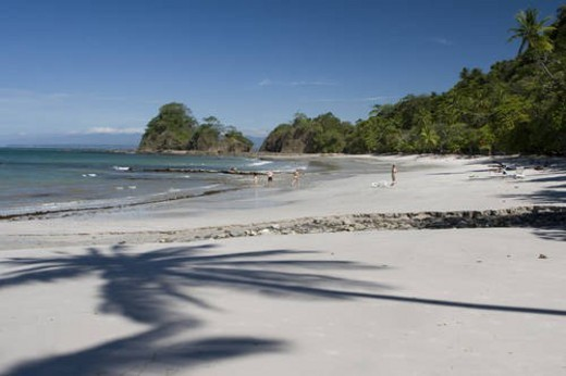 Stock Photo: 4029R-234076 tropical beach shadows of palm trees