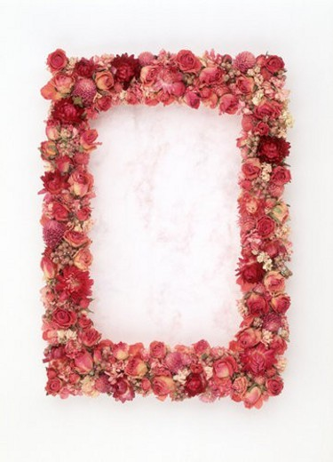 A frame of red and pink flowers : Stock Photo