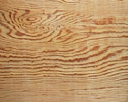 Stock Photo: 4029R-248258 Photography of cedar wood grain, Close Up