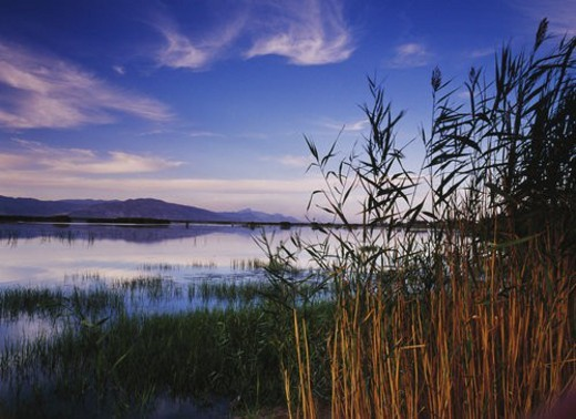 Stock Photo: 4029R-249325 Overview of Xinghai Lake and Helan mountains, Ningxia