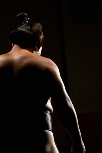 Sumo wrestler : Stock Photo