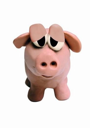 Pig facing forward : Stock Photo