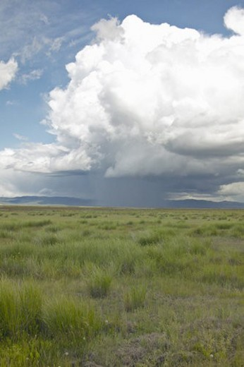 Stock Photo: 4029R-264196 Storm clouds over grasslands and mountains at Red Rock Lake in Centennial Valley