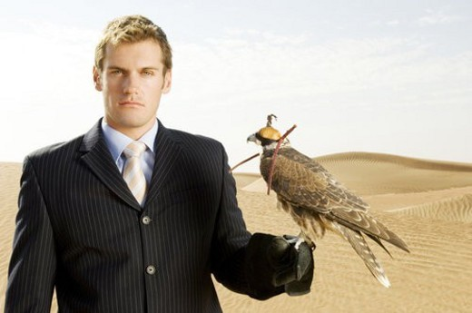 A man in a suit with a hawk : Stock Photo