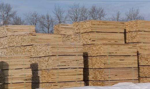 Piles of lumber : Stock Photo