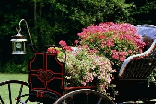 Old carriage with flowers in it : Stock Photo