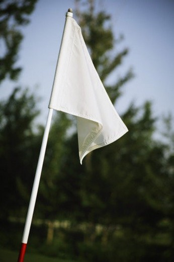 Flag on the golf course : Stock Photo