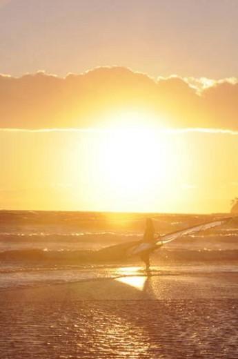 Stock Photo: 4029R-288479 Windsurfer checking out the waves. Shonan, Kamakura, Kanagawa Prefecture, Japan