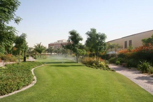 dubai, living, villa, green, grasse : Stock Photo