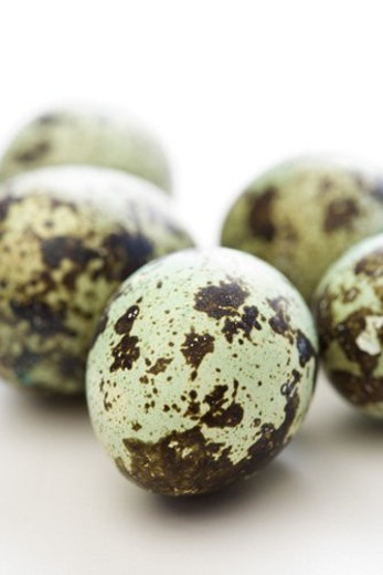 Studio still life of speckled eggs. : Stock Photo