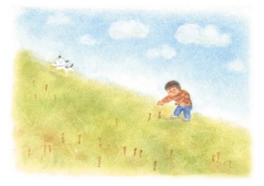 Boy found horsetails, Illustration : Stock Photo