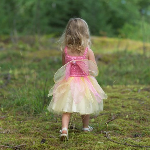 Rear view of a young girl in a fairy costume walking in the wilderness : Stock Photo