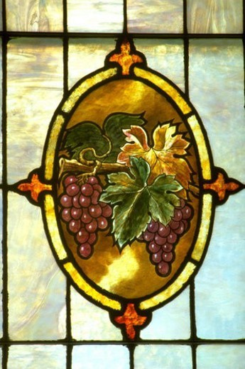 Stock Photo: 4029R-299335 Vines and grapes on stain glass window