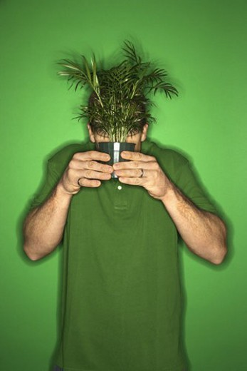 Portrait of adult Caucasian man on green background holding plant in front of his face. : Stock Photo
