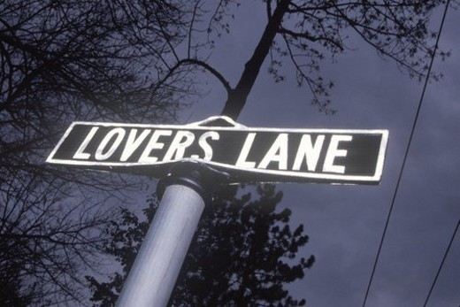 "A sign that reads ""Lovers Lane"" : Stock Photo"