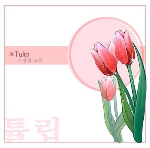 plants, nature, Tulip, templet, plant, flowers, flower : Stock Photo