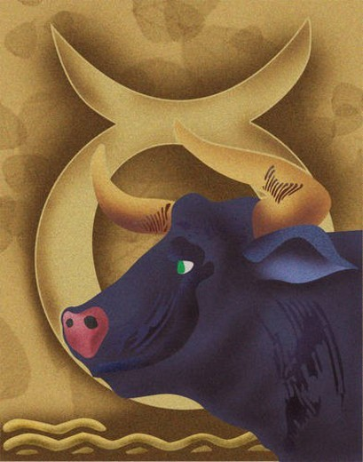 Stock Photo: 4029R-314968 Close-up of bull with zodiac sign, Taurus